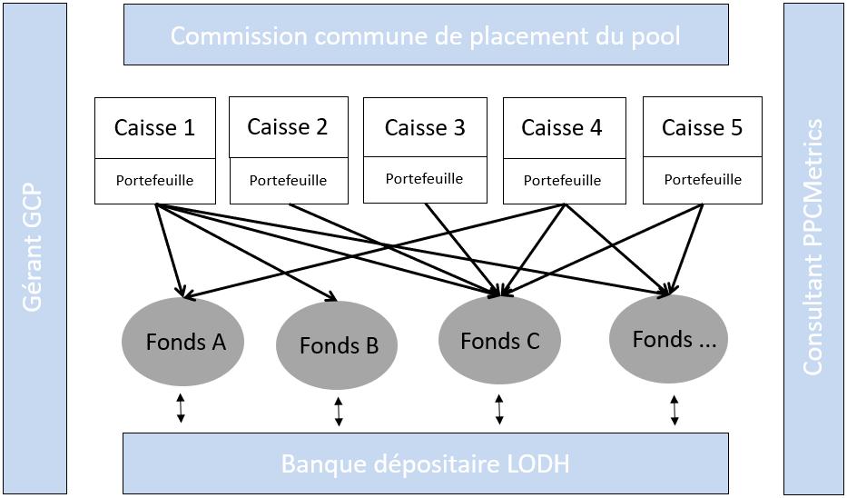 Schéma organique Pool Previcab